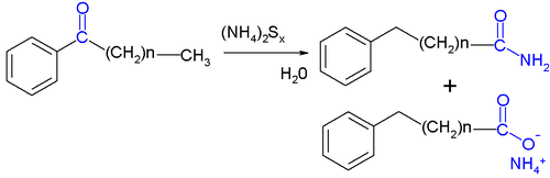 Willgerodt Reaction
