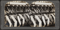 Winding thread from skeins on to bobbins. Silk industry (reeled silk throwing), South Manchester, Conn., U.S.A, by Keystone View Company.png
