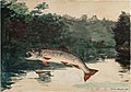 Winslow Homer - Leaping Trout.jpg