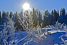 Winter Ugra LR-LR.jpg