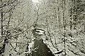 Winterland (4289421199).jpg
