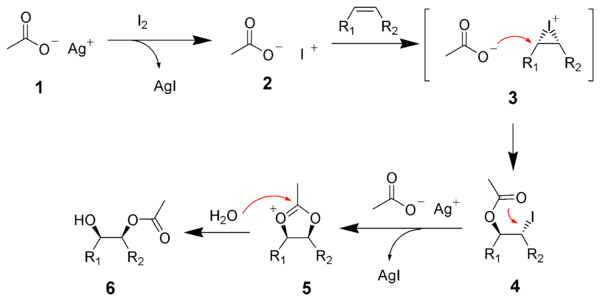 The mechanism of the Woodward cis-hydroxylation