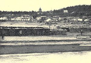 Woodyard and Nulato, Alaska circa 1908.jpg
