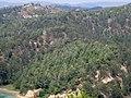World - panoramio (1).jpg