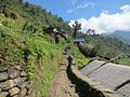 World famous route to Annapurna base camp..jpg