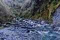Wren Creek, West Coast Region, New Zealand.jpg