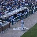 Wrigley Field Cubs dugout.jpg