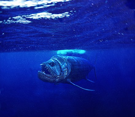xiphactinus fish - HD3000×2615