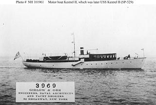 USS <i>Kestrel II</i> (SP-529)