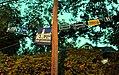 Yard Signs 0019 (30581437132).jpg