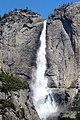 Yosemite Nat 7.jpg
