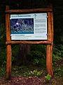 Zapfenwurfspiel Wildpark Alte Fasanerie Juni 2012.JPG