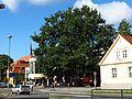 Zehlendorf Friedenseiche 5.jpg
