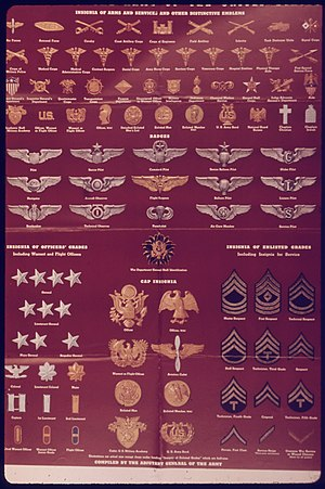 "United States Army enlisted rank insignia of World War II - ""Insignia of the Army of the United States"", Office of War Information."