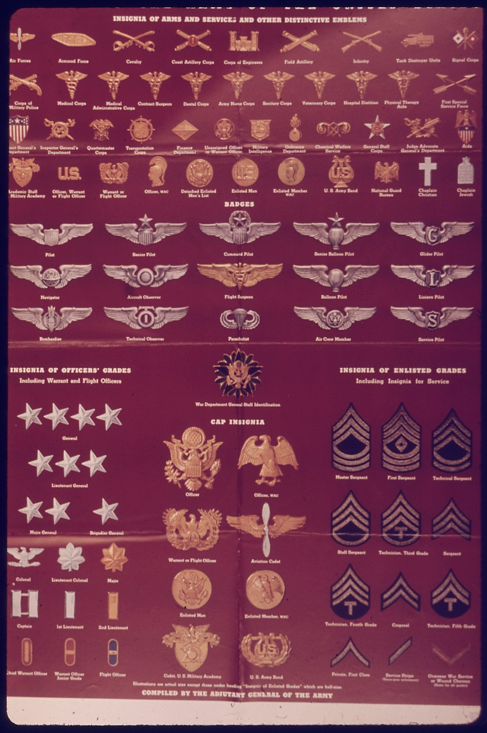 """""""Insignia of the Army of the United States"""" - NARA - 514627"""
