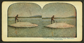"""Larry"" Catching and Cooking Trout, Yellowstone National Park, from Robert N. Dennis collection of stereoscopic views 3.png"