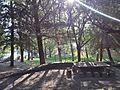 Área recreativa Fuenmayor03.jpg
