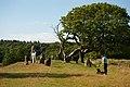 Örelids stenar - KMB - 16001000181084.jpg