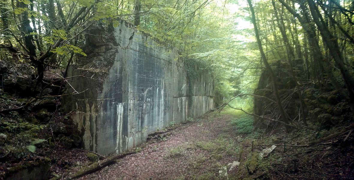 Überwerfungsbauwerk bei Benestroff für Spurwechsel der verschiedenen Fahrtrichtungen in Frankreich und Deutschland. Heute ist die ehemals zweigleisige Strecke völlig renaturiert.