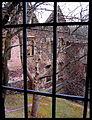 Świny zamek (7) Świny zamek. Foto Barbara Maliszewska.JPG