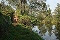 Žďár, Břehy, Jizera river.jpg