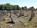 Єврейське кладовище (Підгайці) 2015 3.JPG
