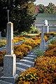 Братські могили воїнів Радянської армії, Дубенське кладовище, Рівне, Україна.jpg