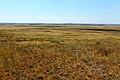 Вид с высоты 236,6 в западном направлении - panoramio.jpg