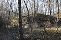 Камінне село, березень 16.jpg