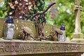 Комплекс пам'яток «Личаківський цвинтар», Вулиця Мечникова, 50.jpg