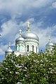 Купола собора сквозь ветви сирени.jpg