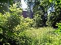 Летний полдень в Мамонтовке. - panoramio (1).jpg