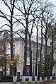 Липа кримська по вулиці Лесі Українки, 60. Фото 3.jpg