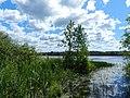 Озеро Букино.jpg