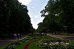 Парк ім Шевченка DSC 0614 04.jpg