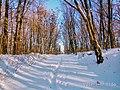 Региональный ландшафтный парк «Диканский» зимой 8.jpg