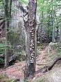 Скельно-печерний комплекс Поляницького регіонального парку (дерево і камінь).jpg