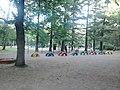 Удельный парк - panoramio (3).jpg