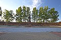 Ярцево. Братское кладбище 3720 советских воинов.jpg