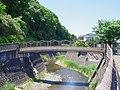 三沢川 川崎市多摩区にて 2013.5.17 - panoramio.jpg