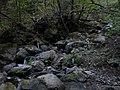 亀石の近く - panoramio.jpg