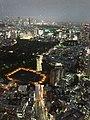 六本木ヒルズ大展望台 東京シティビュー - panoramio (33).jpg