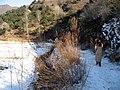 北京怀柔巴克公社 - panoramio - Tiger@西北 (3).jpg