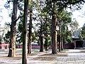 孔庙 - panoramio.jpg
