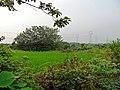 安徽省巢湖市含山县 - panoramio (294).jpg