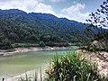 新丰司茅坪林场20150412 - panoramio (46).jpg