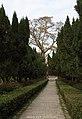 泉州开元寺 Kai yuan si, Quanzhou - panoramio.jpg