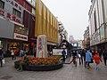 淮河路步行街 - Huaihe Pedestrian Street - 2014.11 - panoramio.jpg
