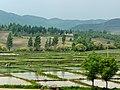 烏吉密鄉 Wujimi Rural Townshop - panoramio.jpg