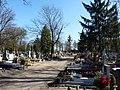 - Cmentarz Nowofarny - panoramio (27).jpg